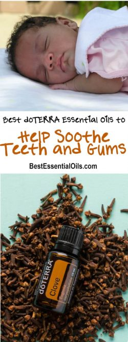 Best doTERRA Essential Oils to Help Sooth Teeth and Gums