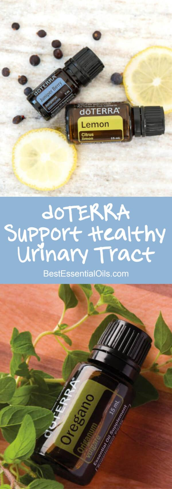 Support Your Body with doTERRA Essential Oils for Urinary Tract Health