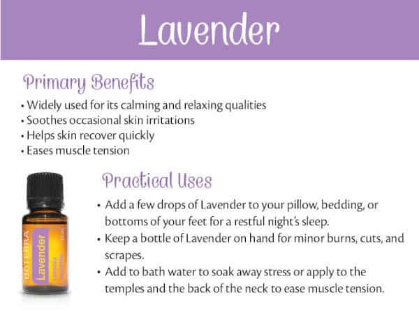 doTERRA Lavender Benefits and Uses