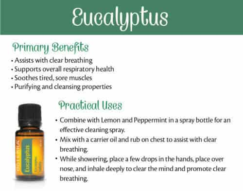 Natural Lemon Oil Uses