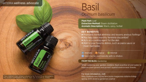 doTERRA Basil Essential Oil Uses.""