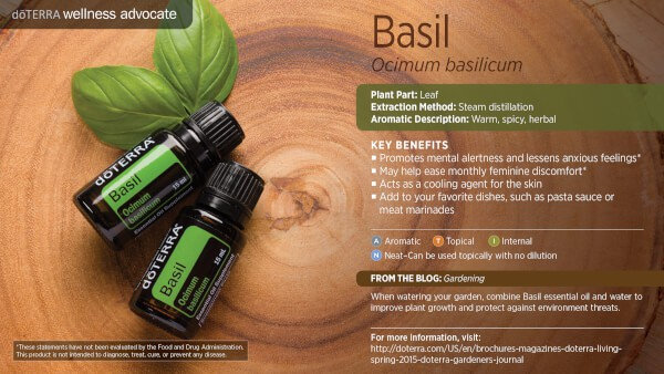 doTERRA Basil Benefits