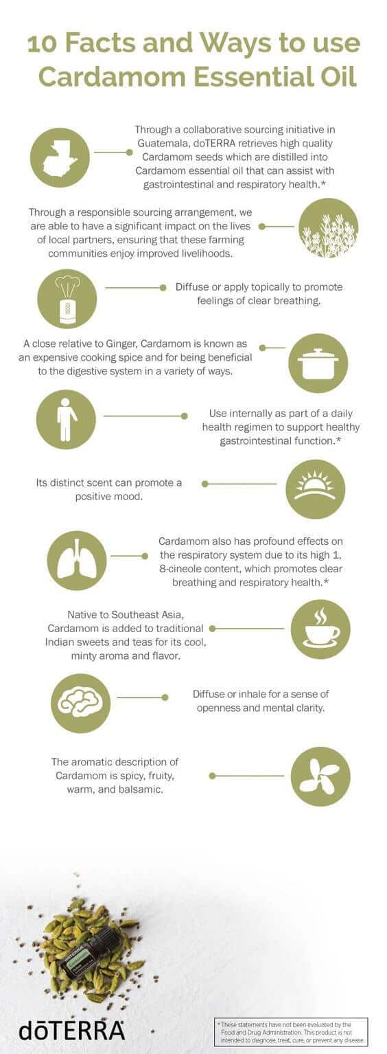 10 Facts and Ways to Uses doTERRA Cardamom