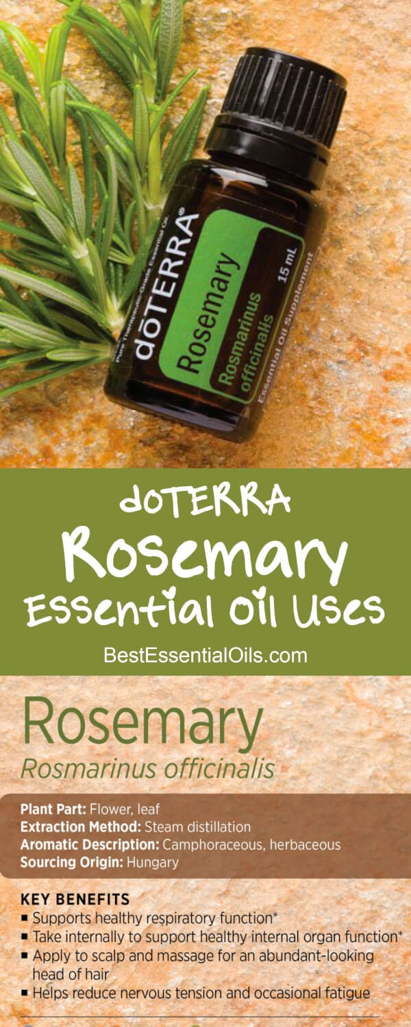 doTERRA Rosemary Essential Oil Uses with DIY and Food ...