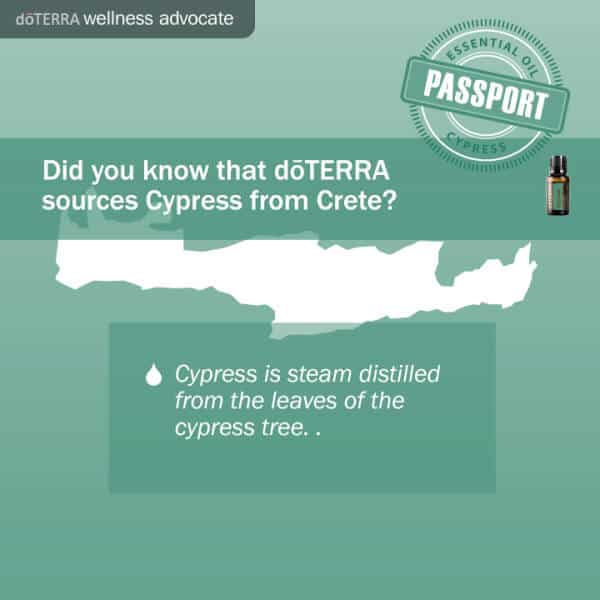 doTERRA Cypress is from Crete