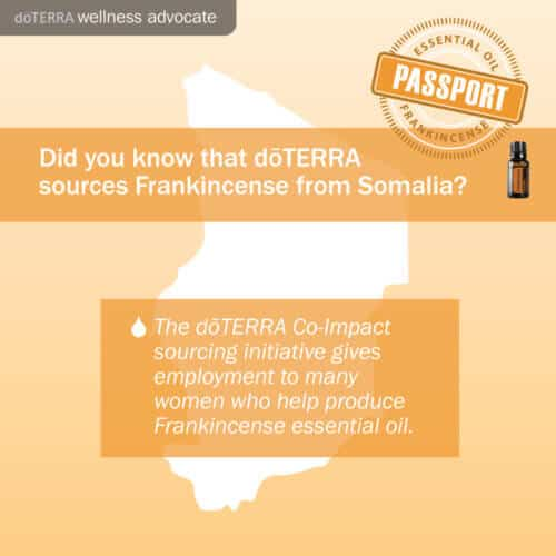 essential-oil-passport-frankincense