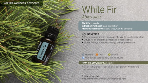 doTERRA white fir Essential Oil Uses