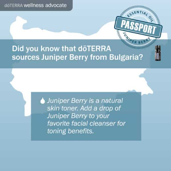 doTERRA juniper berry from Bulgaria