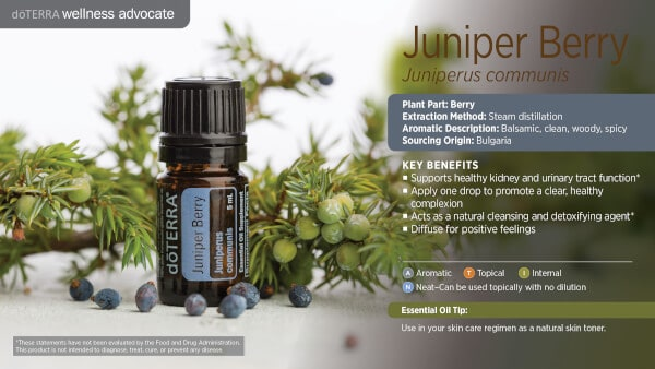 doTERRA Juniper Berry Benefits