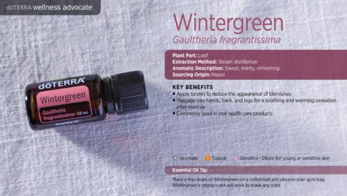 doTERRA wintergreen Essential Oil Uses