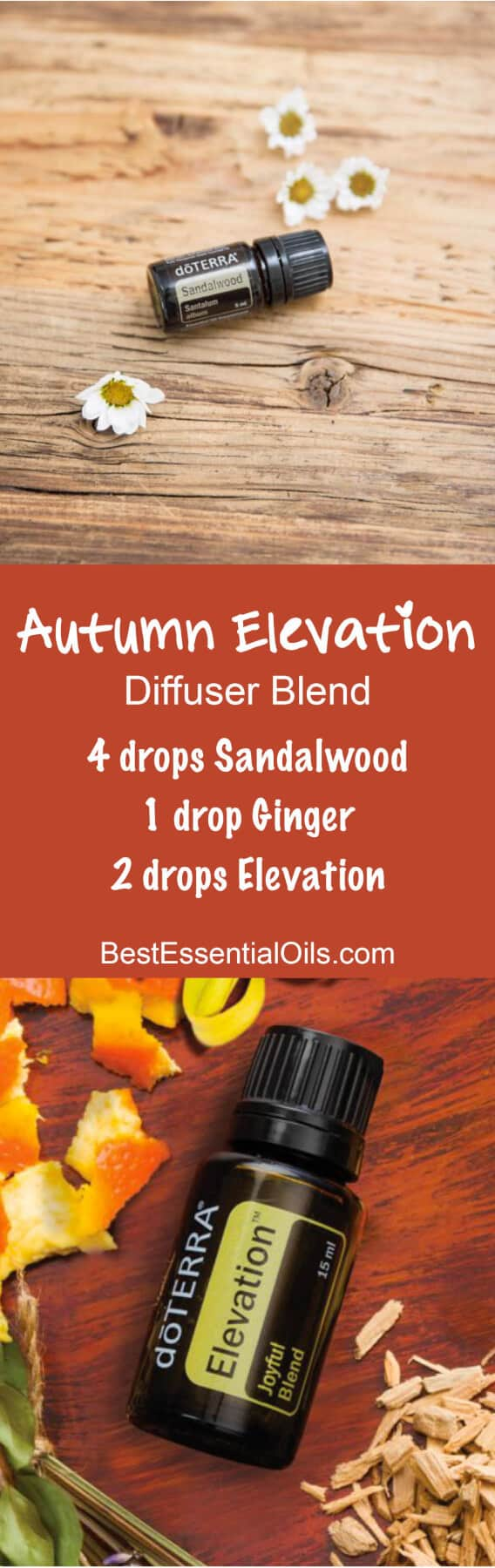 Autumn Elevation doTERRA Diffuser Blend