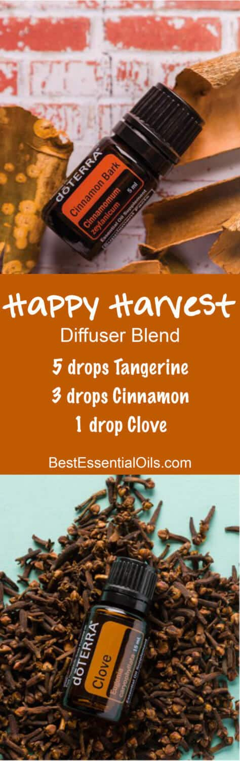 Happy Harvest doTERRA Diffuser Blend doTERRA Cinnamon Essential Oil Uses