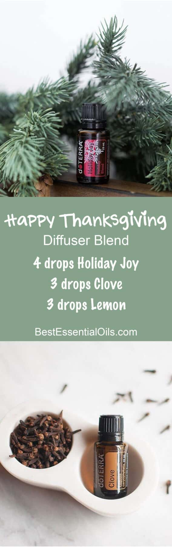 Happy Thanksgiving doTERRA Diffuser Blend