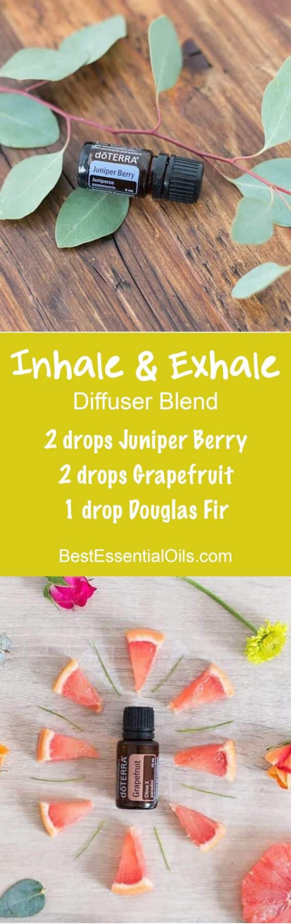 Inhale and Exhale doTERRA Diffuser Blend