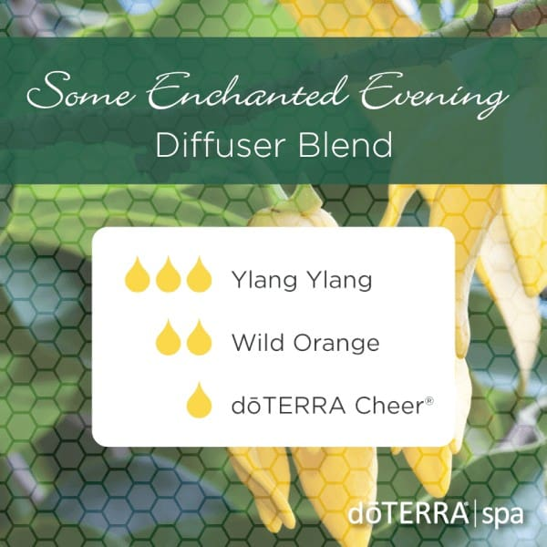 Some Enchanted Evening doTERRA Diffuser Blend