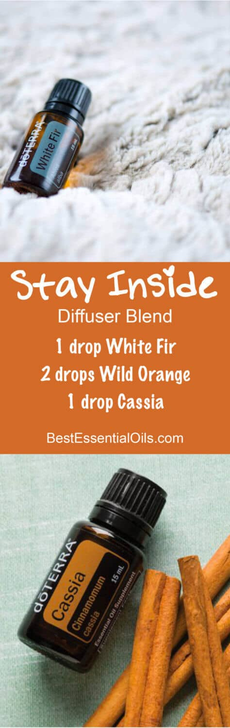 Stay Inside doTERRA Diffuser Blend