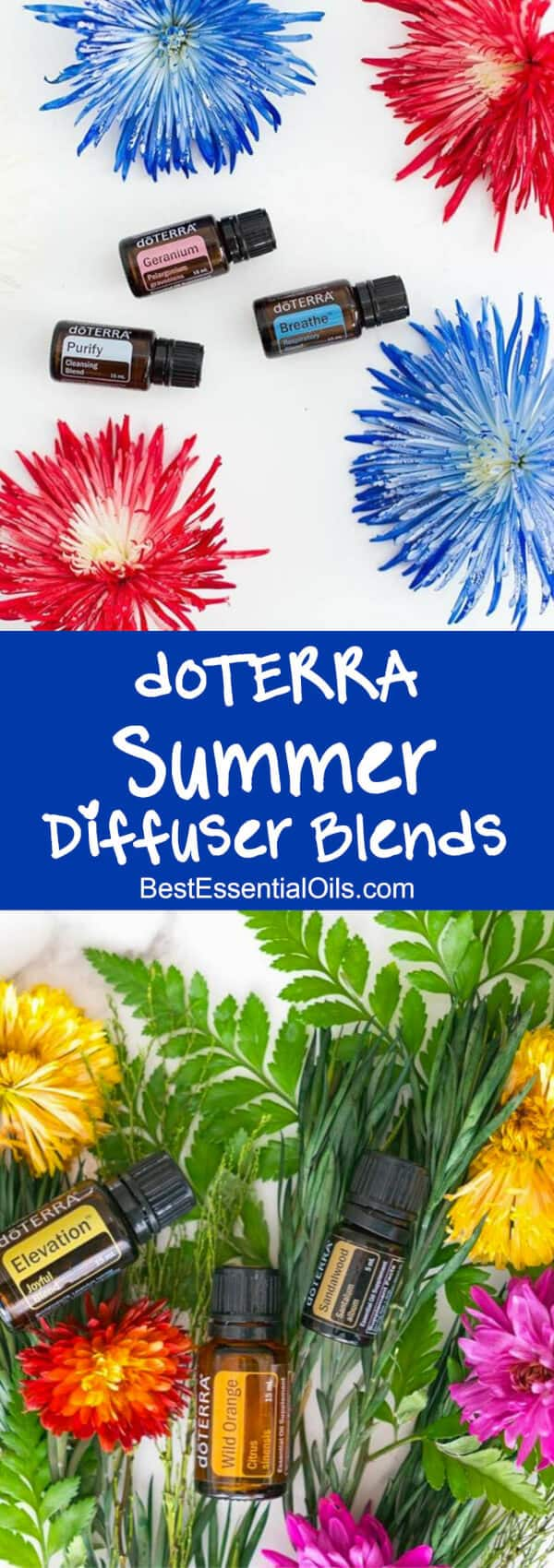 Summer doTERRA Diffuser Blends
