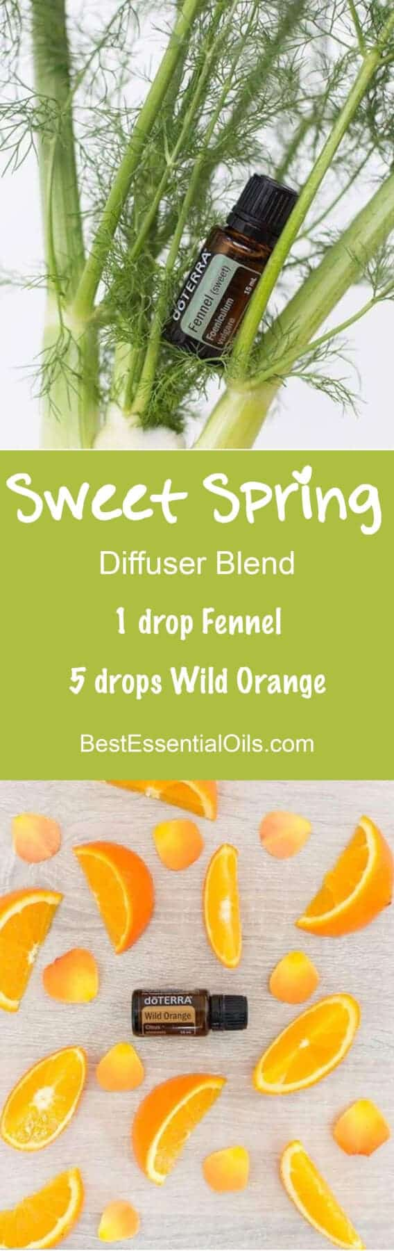 Doterra Fennel Essential Oil Uses With Food And Diffuser