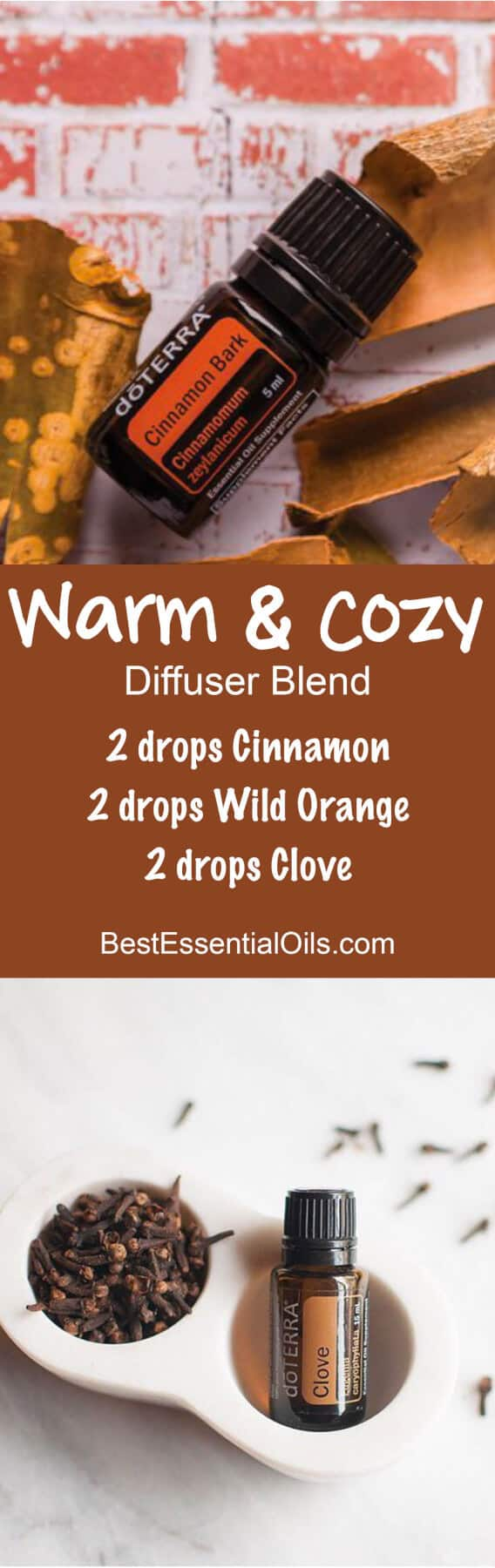 Warm & Cozy doTERRA Diffuser Blend
