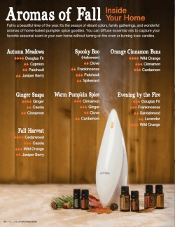 Fall doTERRA Diffuser Blends