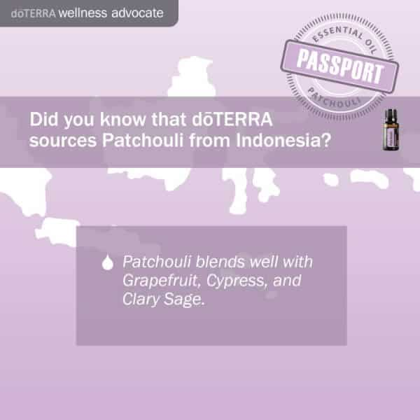 doTERRA Patchouli Indonesia