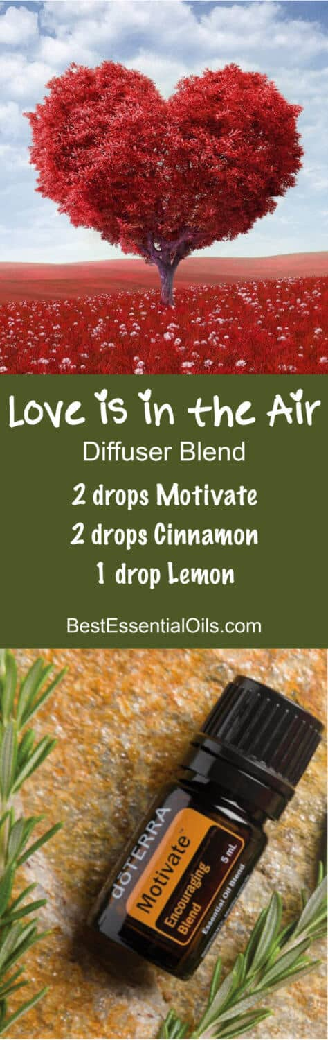 Love is In the Air doTERRA Diffuser Blend