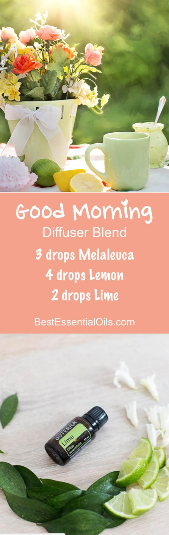 Good Morning doTERRA Diffuser Blend
