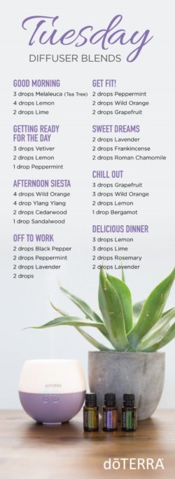 doTERRA Tuesday Diffuser Blends