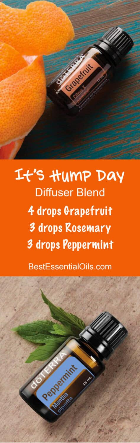 It's Hump Day doTERRA Diffuser Blend