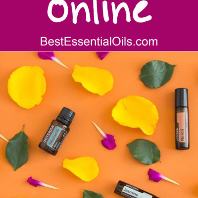 Why You Need a WordPress Blog to be Successful Selling doTERRA Online {Step #6}