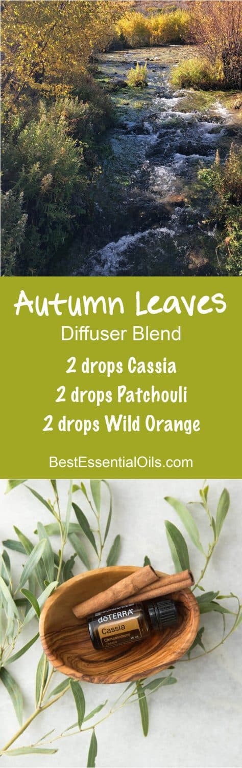 Autumn Leaves doTERRA Diffuser Blend
