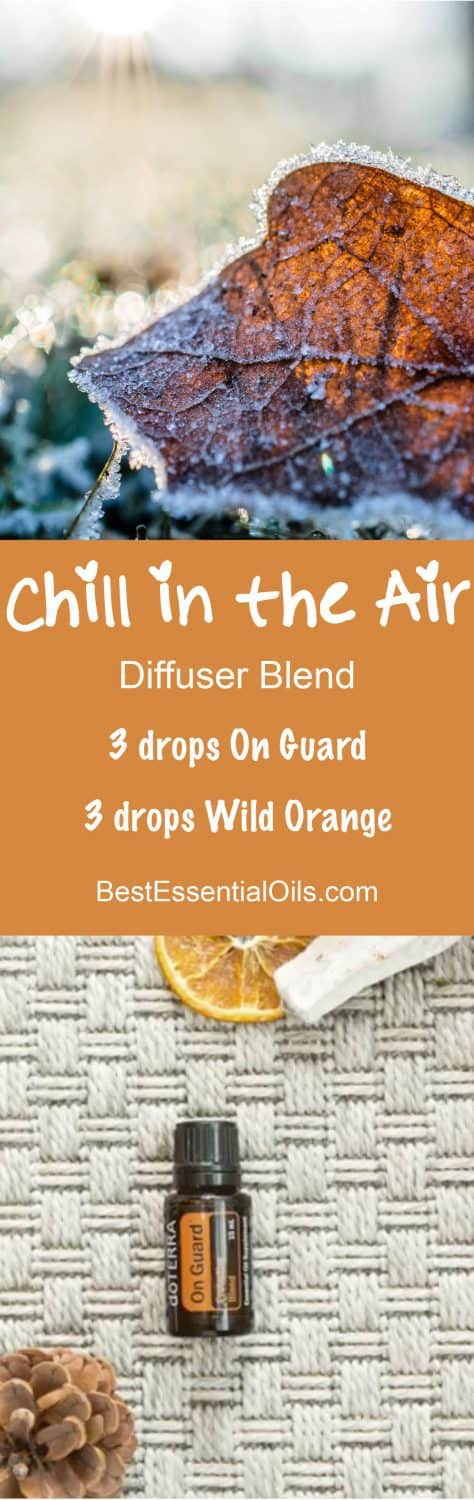 Chill in the Air doTERRA Diffuser Blend