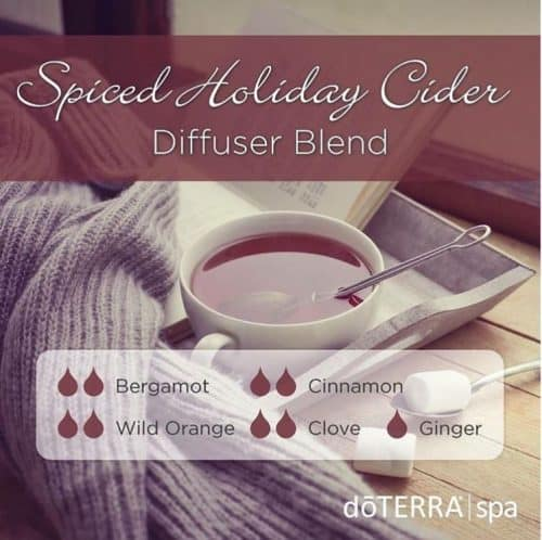spiced holiday cider
