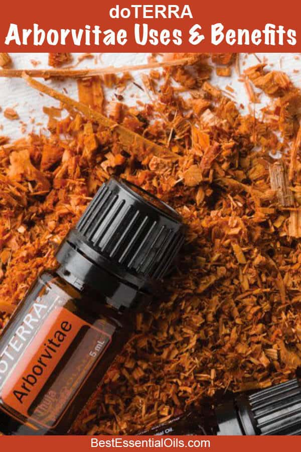 Arborvitae doTERRA Uses and Benefits with Diffuser Recipes