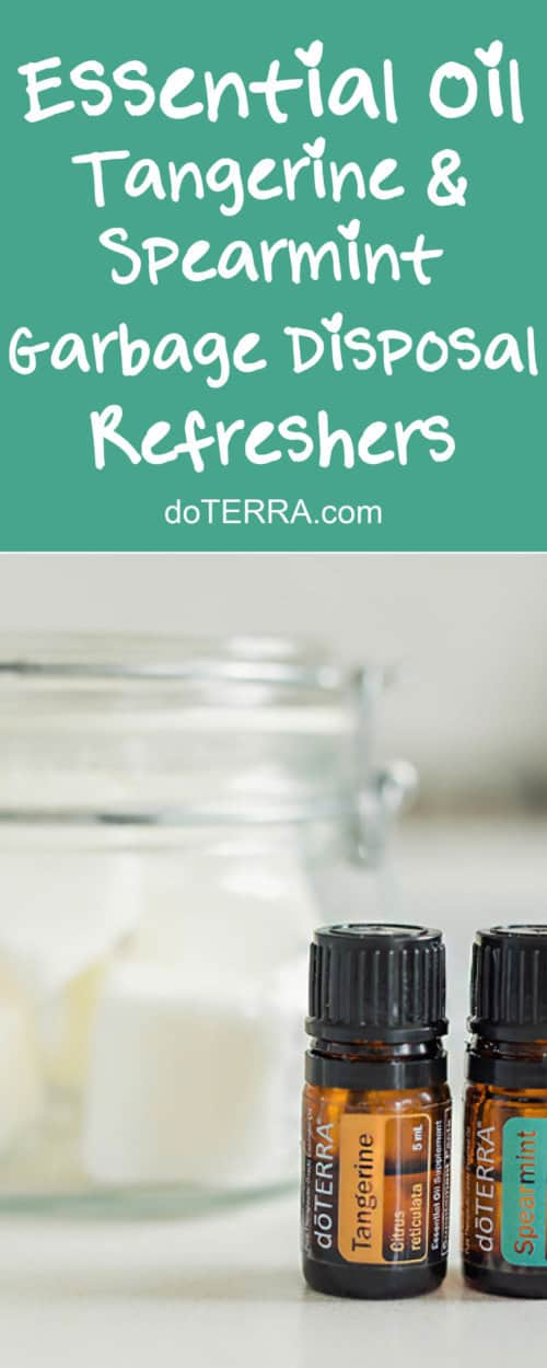 Tangerine and Spearmint Garbage Disposal Refreshers