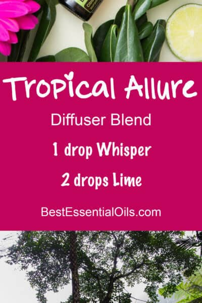 doTERRA Vacation Diffuser Blends You'll Love the Recipes