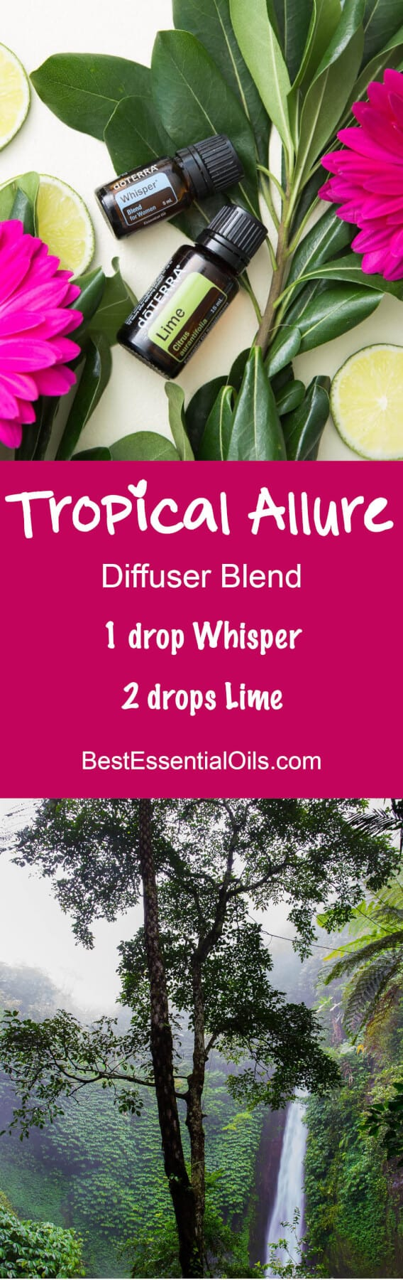 Tropical Allure doTERRA Diffuser Blend doTERRA vacation diffuser blends