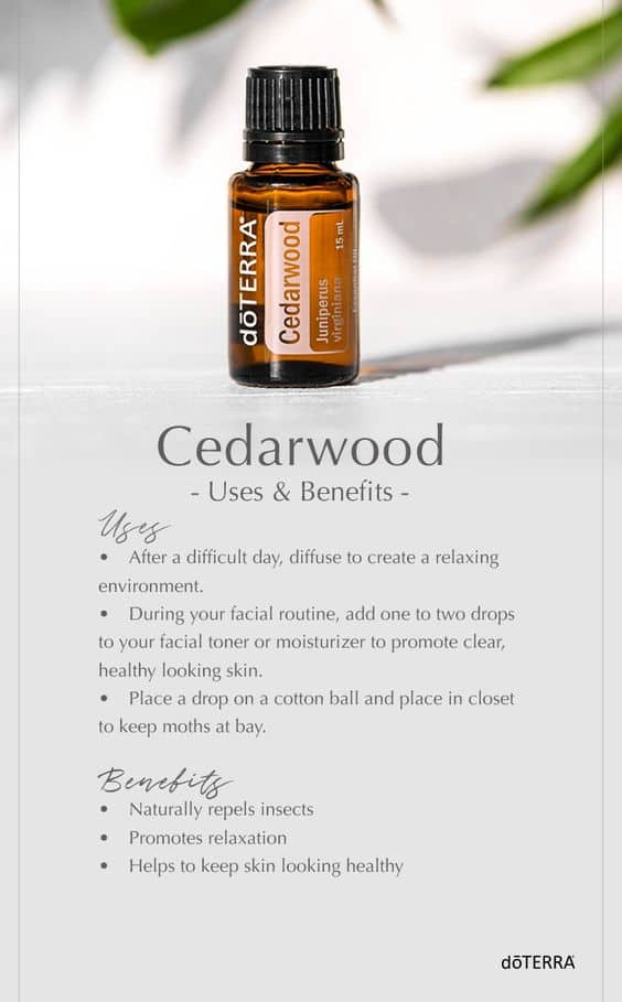 doTERRA Cedarwood Oil Uses and Benefits