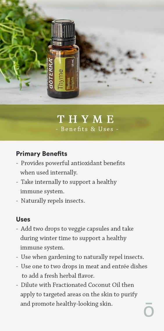 doTERRA Thyme Oil Uses and Benefits