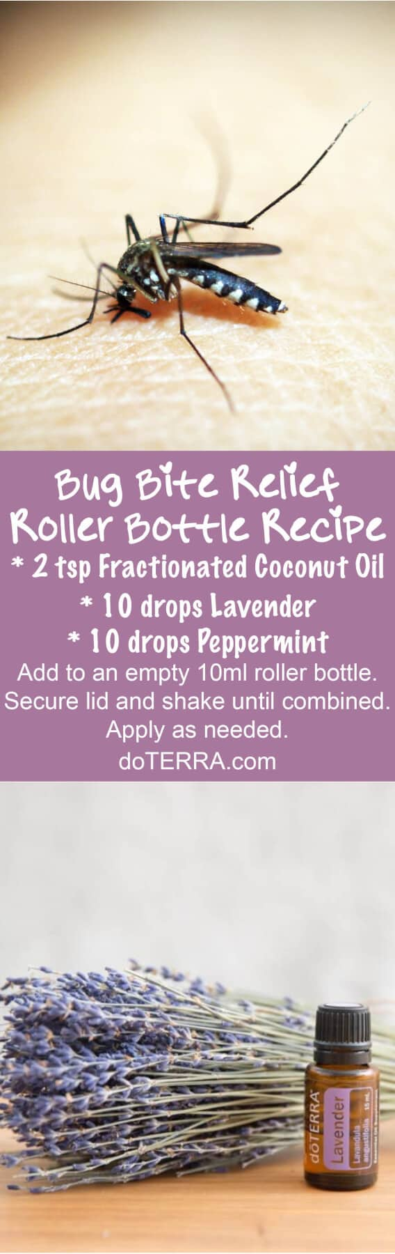 doTERRA Essential Oils for Bug Bites