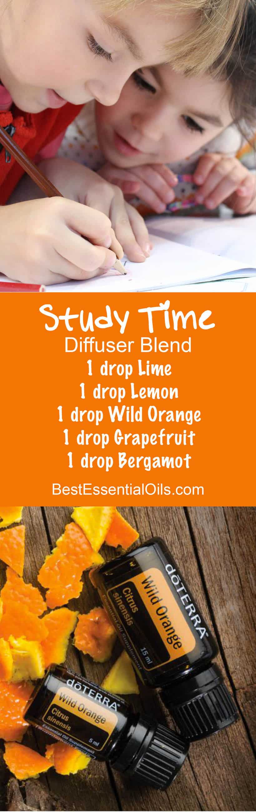 Study Time doTERRA Diffuser Blend