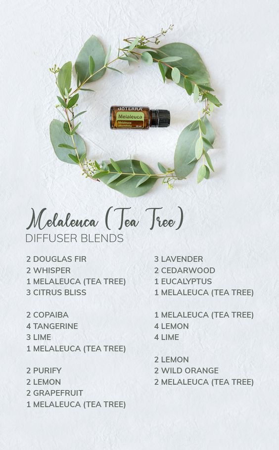 Melaleuca Diffuser Blends