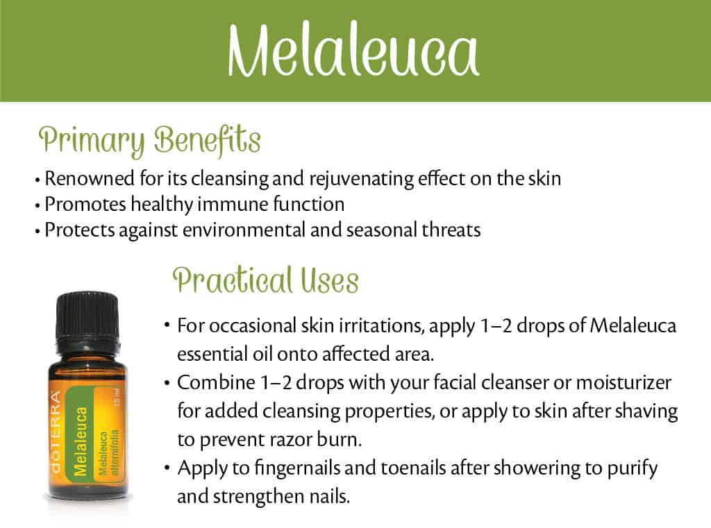 doTERRA Melaleuca Benefits and Uses
