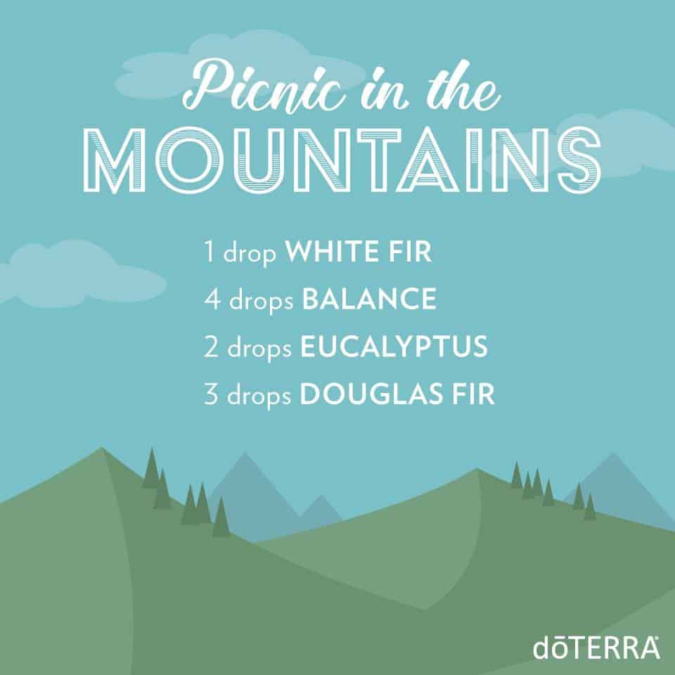 doTERRA Picnic in the Mountains