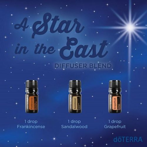 doTERRA A Star in the East Diffuser Blend